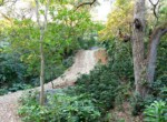 Atenas-Jungle-House-with-over-10-acres-land-to-develop-–-Rural-Nature-and-Stunning-Views-3.jpg